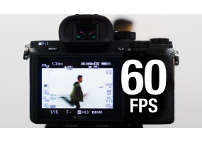 What Frame Rate should you use?